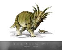 Styracosaurus Fine Art Print