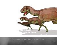Aucasaurus Framed Print