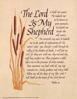 Lord Is My Shepard Fine Art Print