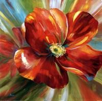 Island Blossom I Framed Print