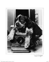 Polaroid Fine Art Print