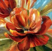 Island Blossom II Framed Print