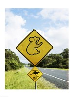 Close-up of animal crossing sign on a roadside, Australia Fine Art Print