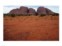 Rock formations on a landscape, Olgas, Uluru-Kata Tjuta National Park, Northern Territory, Australia Closeup Fine Art Print