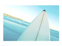 Close-up of a surfboard, Fishery Bay, Australia Fine Art Print