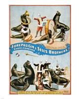 Forepaugh & Sells Brothers Fine Art Print