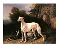 Alfred Dedreux - A Greyhound In An Extensive Landscape Fine Art Print