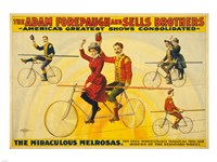 The Miraculous Melrosas Fine Art Print