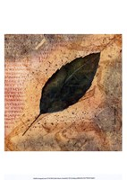 Antiqued Leaves IV Fine Art Print