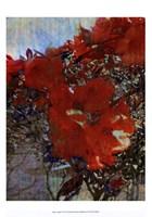 Tangled I Fine Art Print