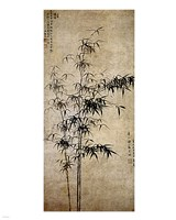 Wang Fu-Ink Bamboo Framed Print