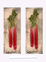 Fresco Veggies IV Framed Print