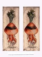 Fresco Veggies VI Fine Art Print