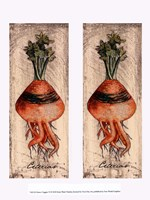 Fresco Veggies VI Framed Print