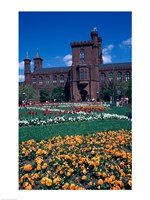 Formal garden in front of a museum, Smithsonian Institution, Washington DC, USA Fine Art Print