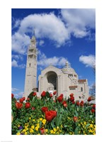 Basilica of the National Shrine of the Immaculate Conception, Washington D.C., USA Fine Art Print