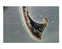 Provincetown Cape Cod photographed from space Fine Art Print