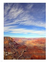 Grand Canyon Arizona Fine Art Print