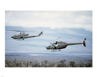 A left side view of an AH-1 Cobra helicopter, front, and an OH-58 Kiowa helicopter Fine Art Print