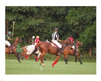 Polo Umpire Fine Art Print