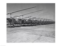 Helicopters in a row, Bell H-13D, Korean War Fine Art Print