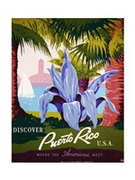 Discover Puerto Rico Framed Print