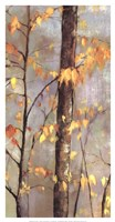 Golden Branches II Fine Art Print