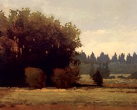 Evening Near Eugene Fine Art Print