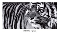 Tiger Eyes Fine Art Print