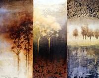 Lost in Trees I Fine Art Print