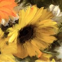 Sunflowers Square II Fine Art Print