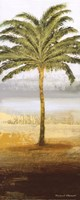 Beach Palm II Fine Art Print