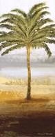Beach Palm II Fine Art Print