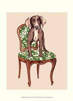 Pampered Pet IV Fine Art Print