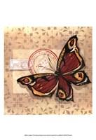 Le Papillon I Fine Art Print