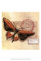 Le Papillon II Fine Art Print