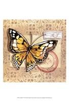 Le Papillon IV Fine Art Print