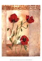 Red Poppies IV Fine Art Print