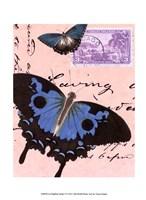 Le Papillon Script V Framed Print