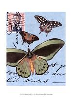 Le Papillon Script VI Framed Print
