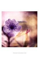 Purple Tranquility I Fine Art Print