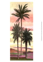 Blush Palms II Fine Art Print