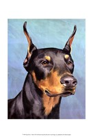 Dog Portrait-Dobie Framed Print
