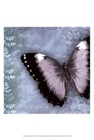Butterfly Notes X Fine Art Print