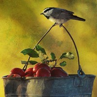 Apples & Chickadee Fine Art Print
