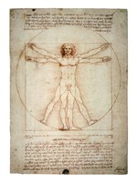 Vitruvian Man Framed Print
