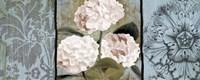 Pink Hydrangeas Panel I Fine Art Print