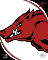 University of Arkansas Razorbacks Team Logo Fine Art Print