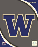 University of Washington Huskies Team Logo Fine Art Print