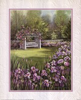 White Swing in Arbor Framed Print